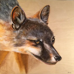 Desert Fox Painting